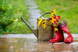 Maak je tuin herfstklaar: zorg voor een afdak tegen de regen