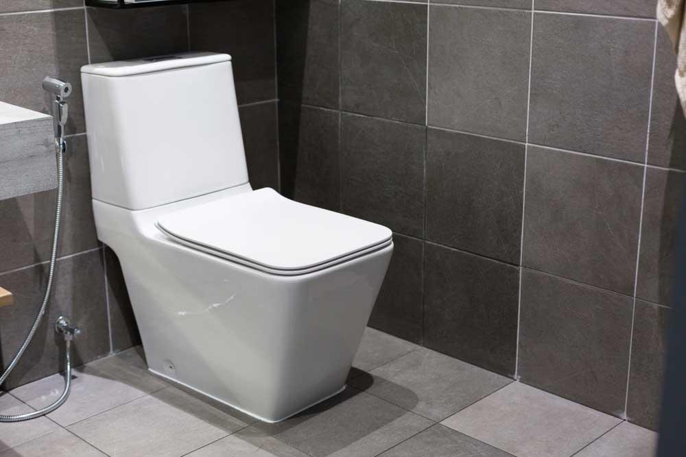 Bijzondere looks voor het toilet