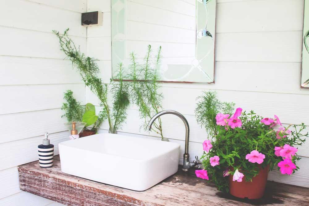Planten in de badkamer? Prachtig!