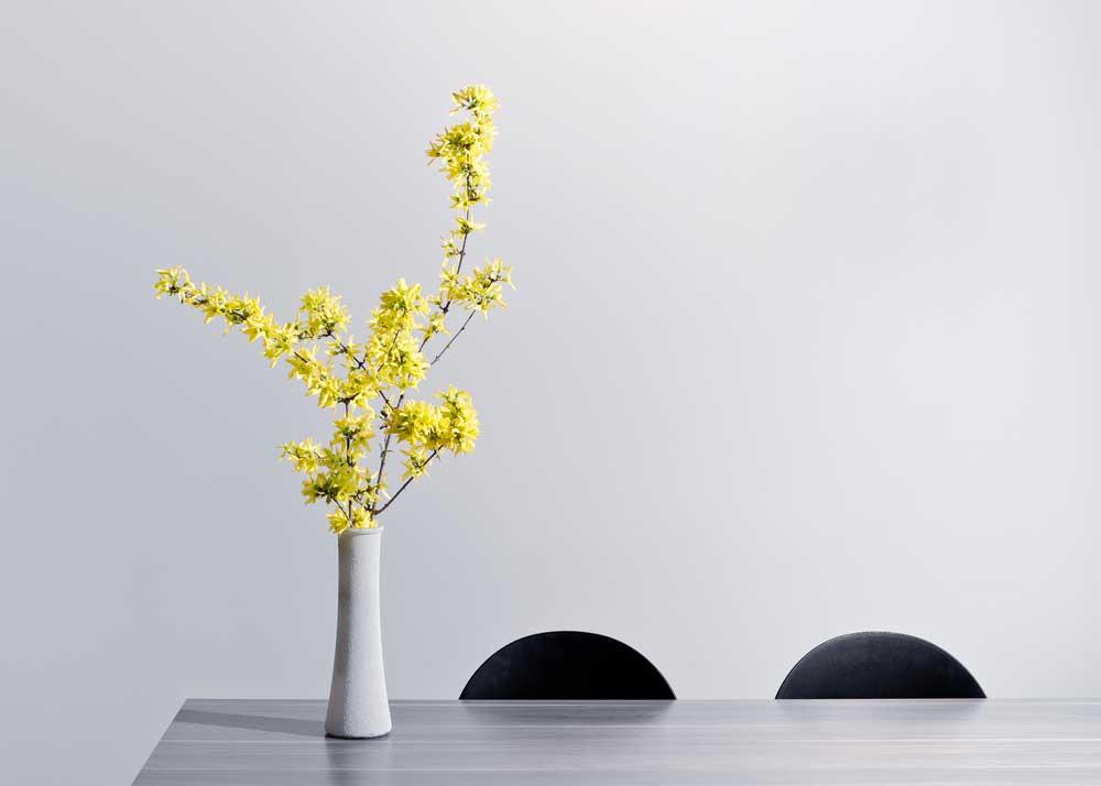 Pro tip: zorg dat je altijd verse bloemen in huis hebt