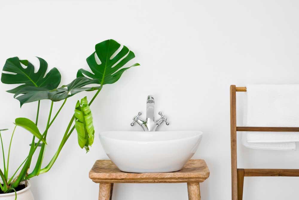 De grote plant mag niet ontbreken in de badkamer