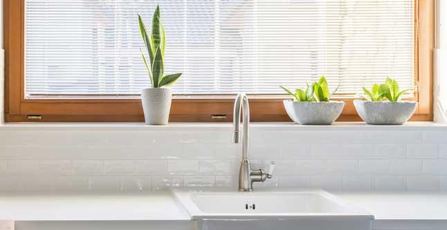 Planten in de vensterbank: een ideale oplossing