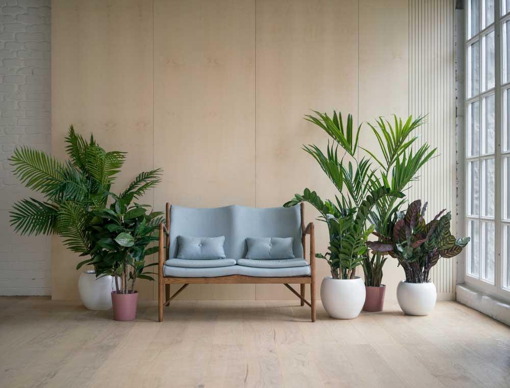 Pak uit in de woonkamer met grote planten