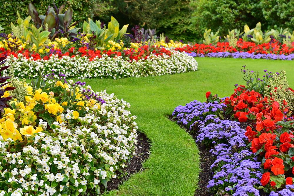 Kleurcombinatie in kleurrijke tuin