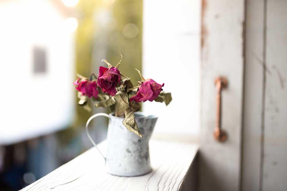 Stijlvol: gedroogde bloemen in huis