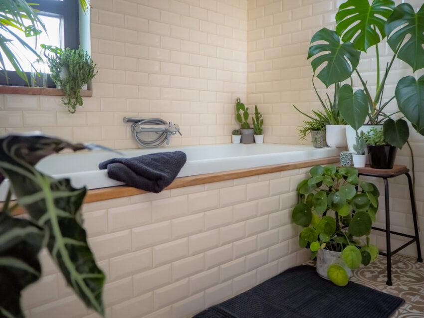 Planten In De Badkamer Hier Kun Je Ze Kwijt Woonstijl