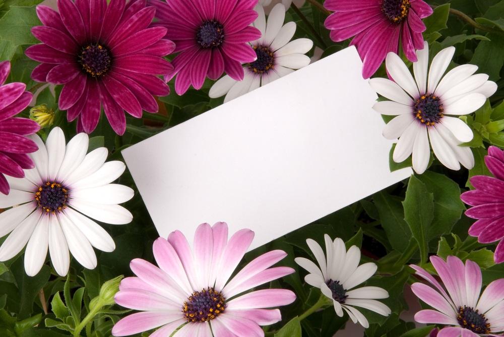 Handgeschreven kaartje